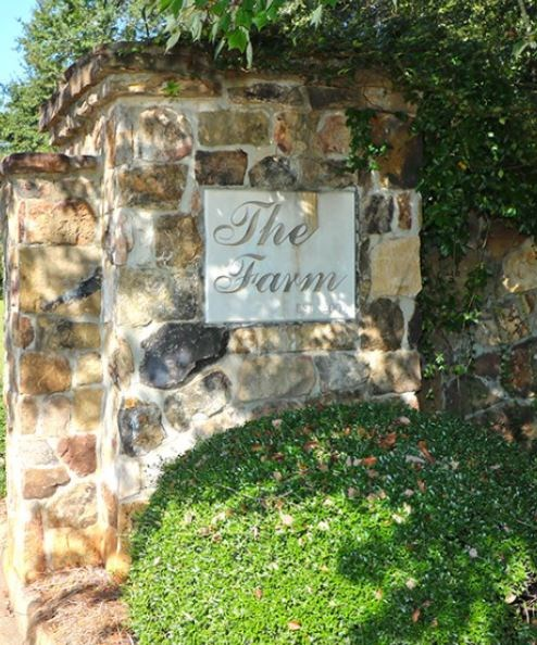 LOT 8 THE FARM - PHASE 2, PERRY, GA 31069