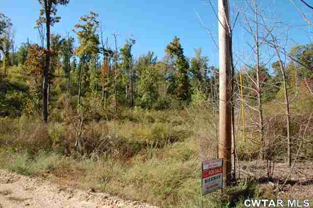 0 Danville Crossing Road,Big Sandy,Tennessee 38221,Lots/land,0 Danville Crossing Road,148512