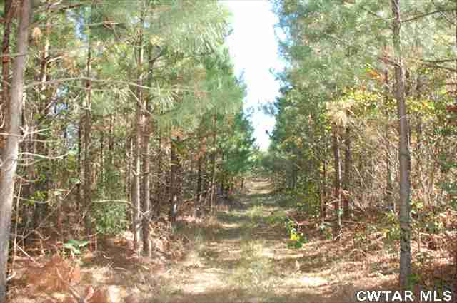 0 Sandys Camp Road,Big Sandy,Tennessee 38221,Lots/land,0 Sandys Camp Road,148517