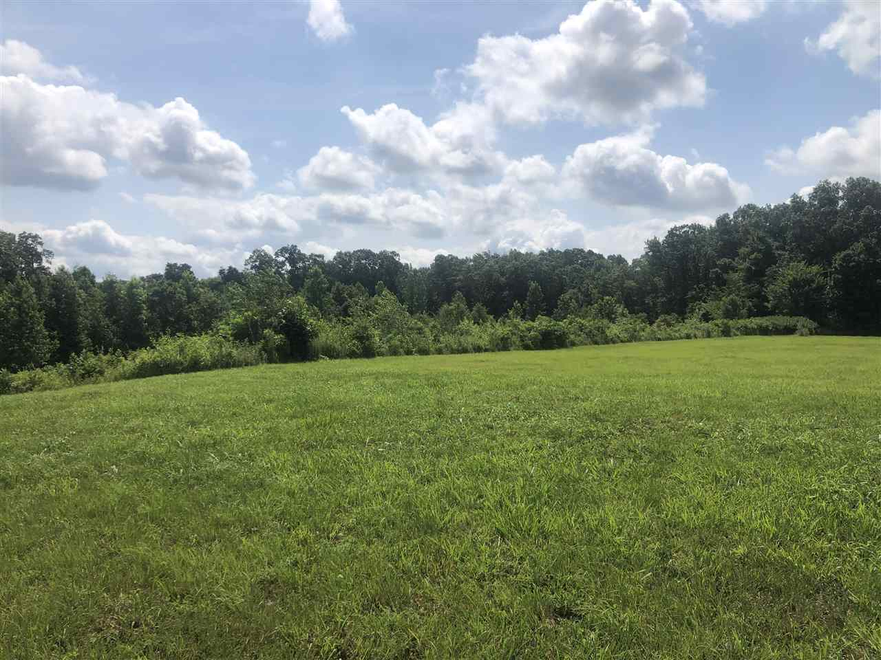 Lot 42 Oak Ridge Drive,Henderson,Tennessee 38340,Lots/land,Lot 42 Oak Ridge Drive,152271