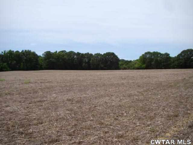 00 Dukes Lake Road,Three Way,Tennessee 38343,Lots/land,00 Dukes Lake Road,156918