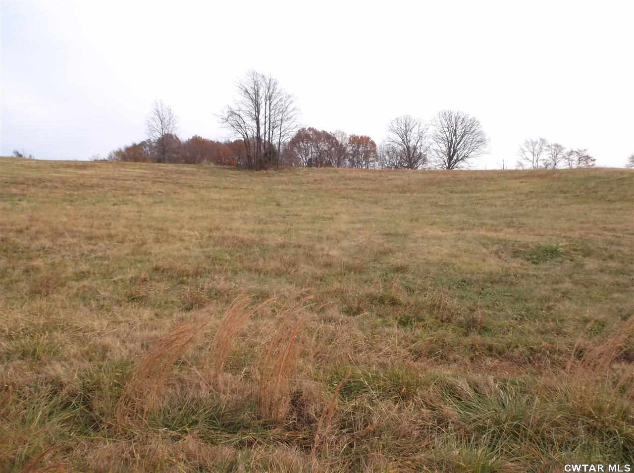0 Diamond Oaks,Trenton,Tennessee 38382,Lots/land,0 Diamond Oaks,159559