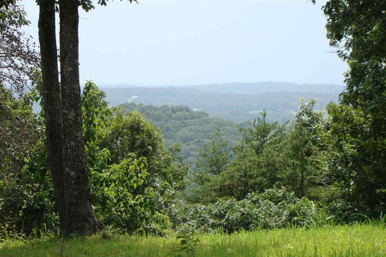 0 Old Ferry Road,Clifton,Tennessee 38425,Lots/land,0 Old Ferry Road,163165
