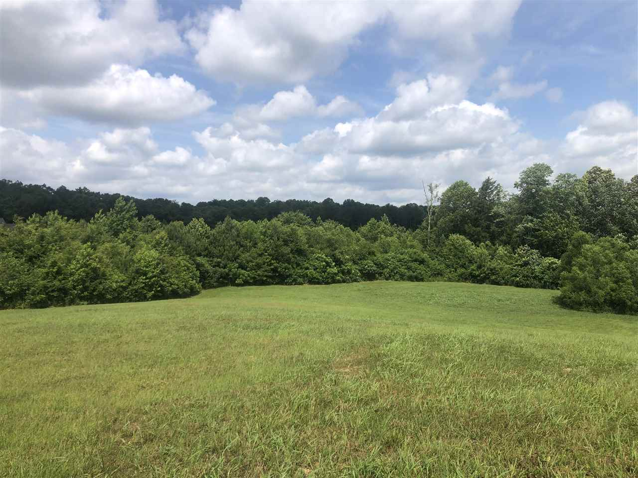 Lot 23 Timberwood Cove,Henderson,Tennessee 38340,Lots/land,Lot 23 Timberwood Cove,163171