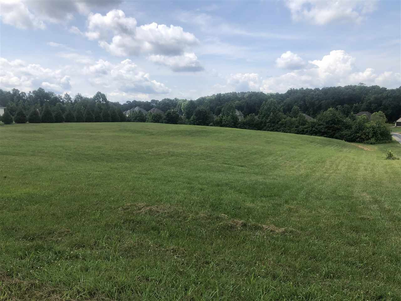 Lot 6 Ridgewood Drive,Henderson,Tennessee 38340,Lots/land,Lot 6 Ridgewood Drive,163241