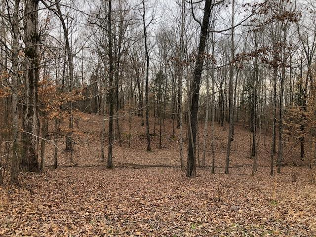 Lot 9 Fox Run Cove,Henderson,Tennessee 38340,Lots/land,Lot 9 Fox Run Cove,166776