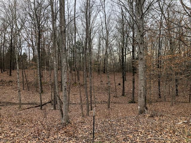 Lot 10 Fox Run Cove,Henderson,Tennessee 38340,Lots/land,Lot 10 Fox Run Cove,166777