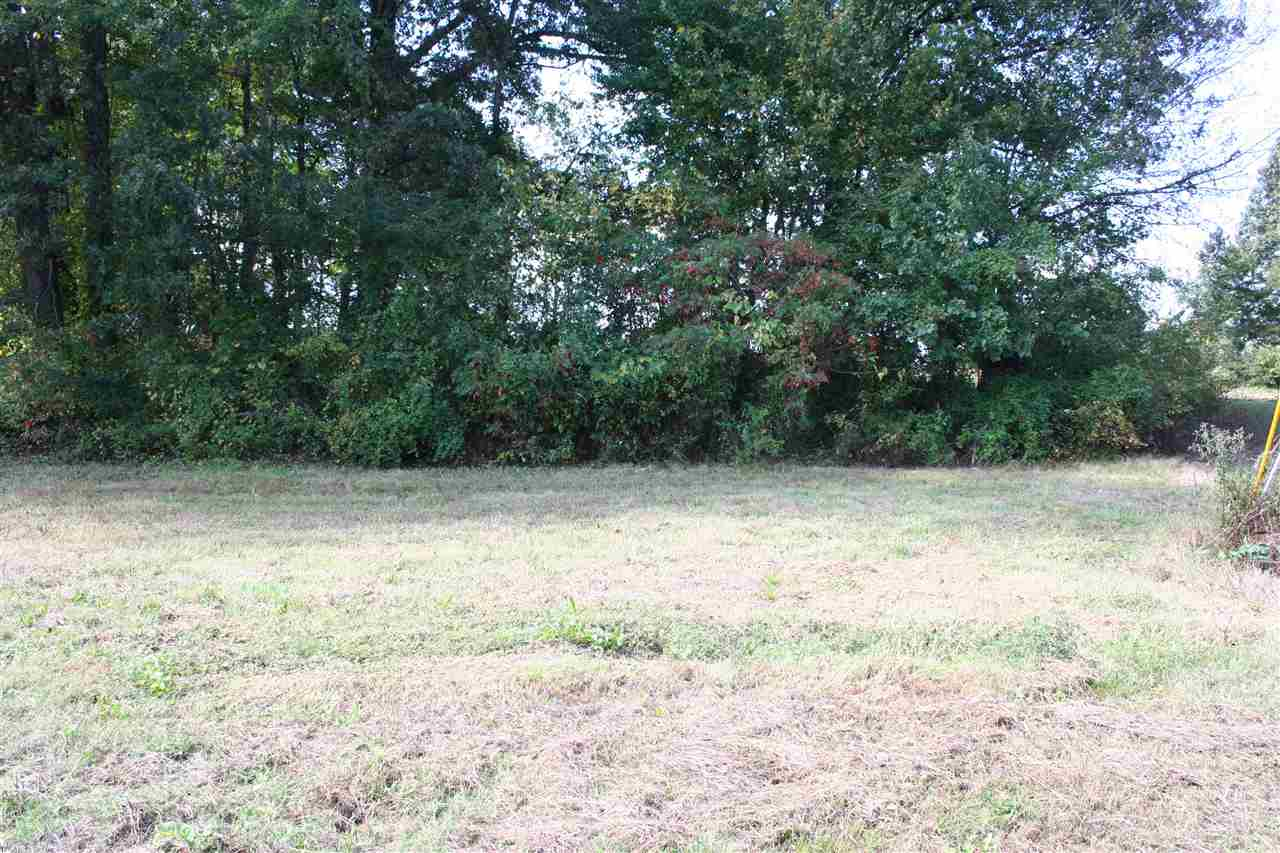126 Panola Dr,Martin,Tennessee 38237,Lots/land,126 Panola Dr,169223