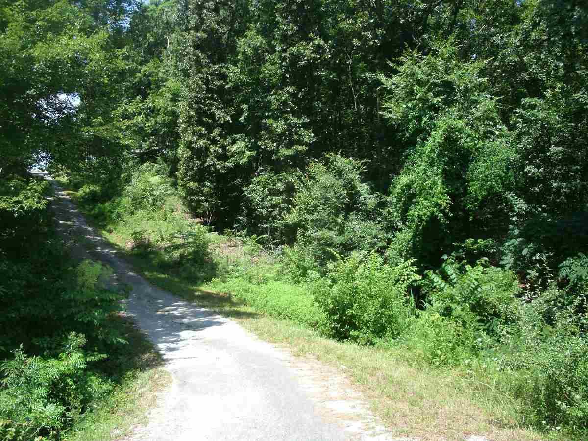 Parcel 13 Bivins Ln,Parsons,Tennessee 38363,Lots/land,Parcel 13 Bivins Ln,169446