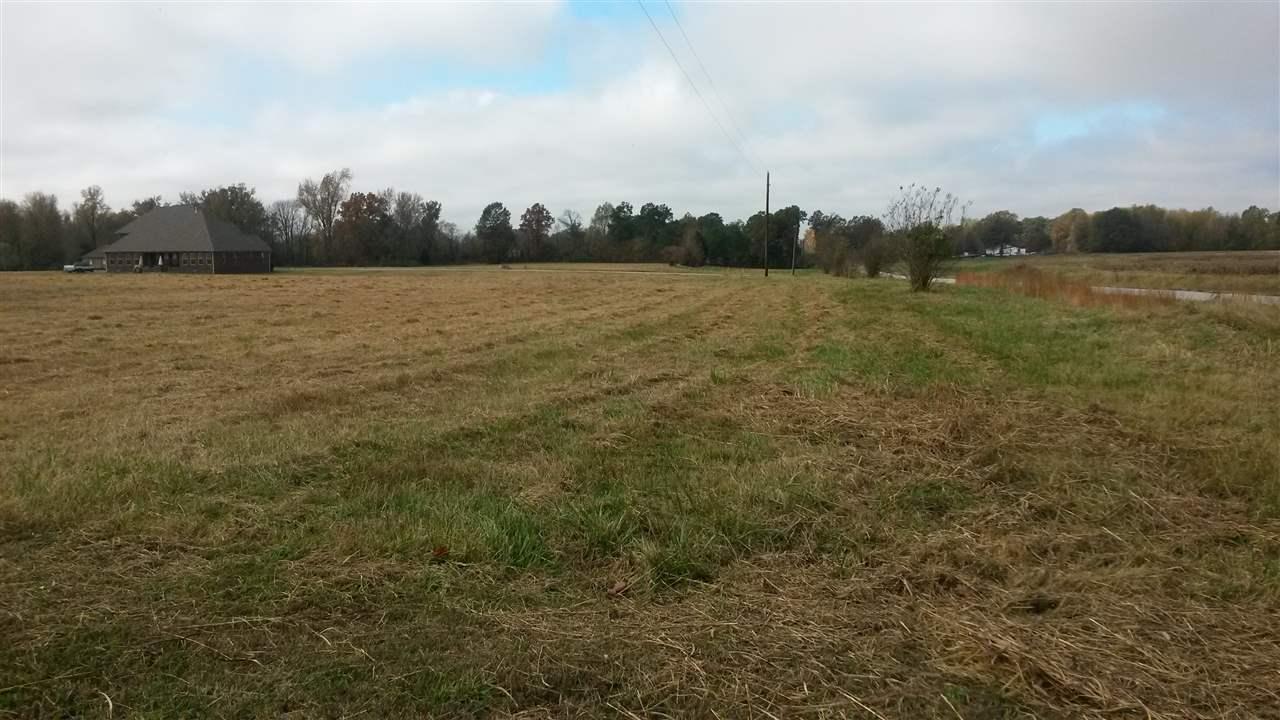 00 VIRGIL PURHAM Lane,JACKSON,Tennessee 38305,Lots/land,00 VIRGIL PURHAM Lane,169753