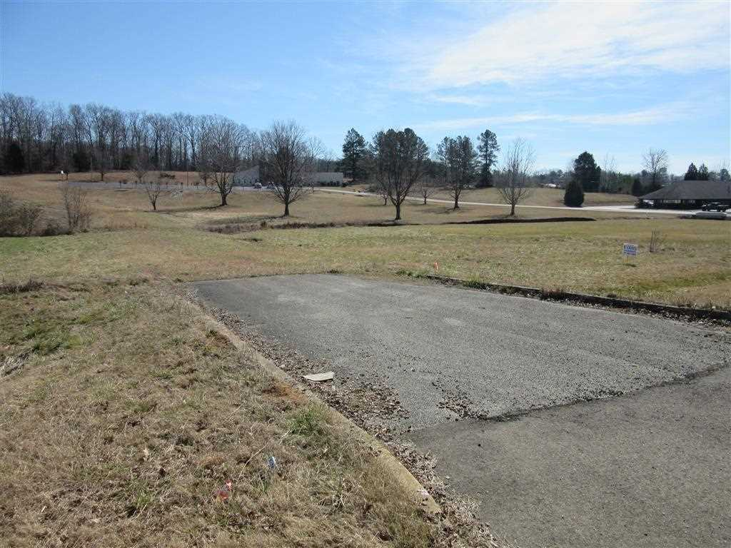 730 Tennessee Ave N,Parsons,Tennessee 38363,Lots/land,730 Tennessee Ave N,171159