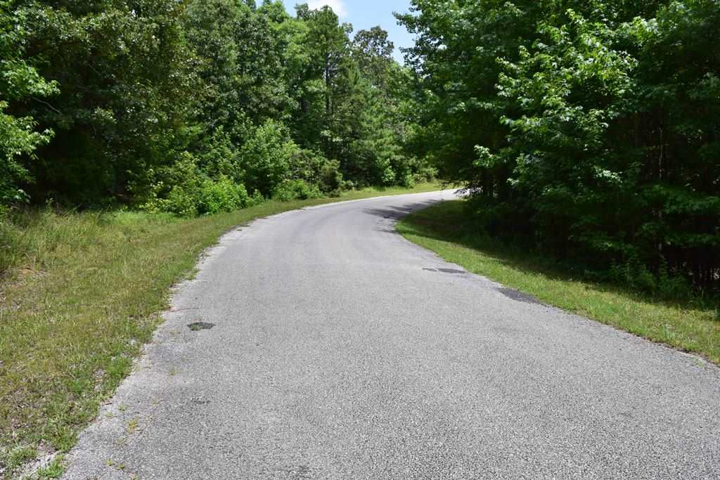 000 Sand Road,Henderson,Tennessee 38340,Lots/land,000 Sand Road,173413