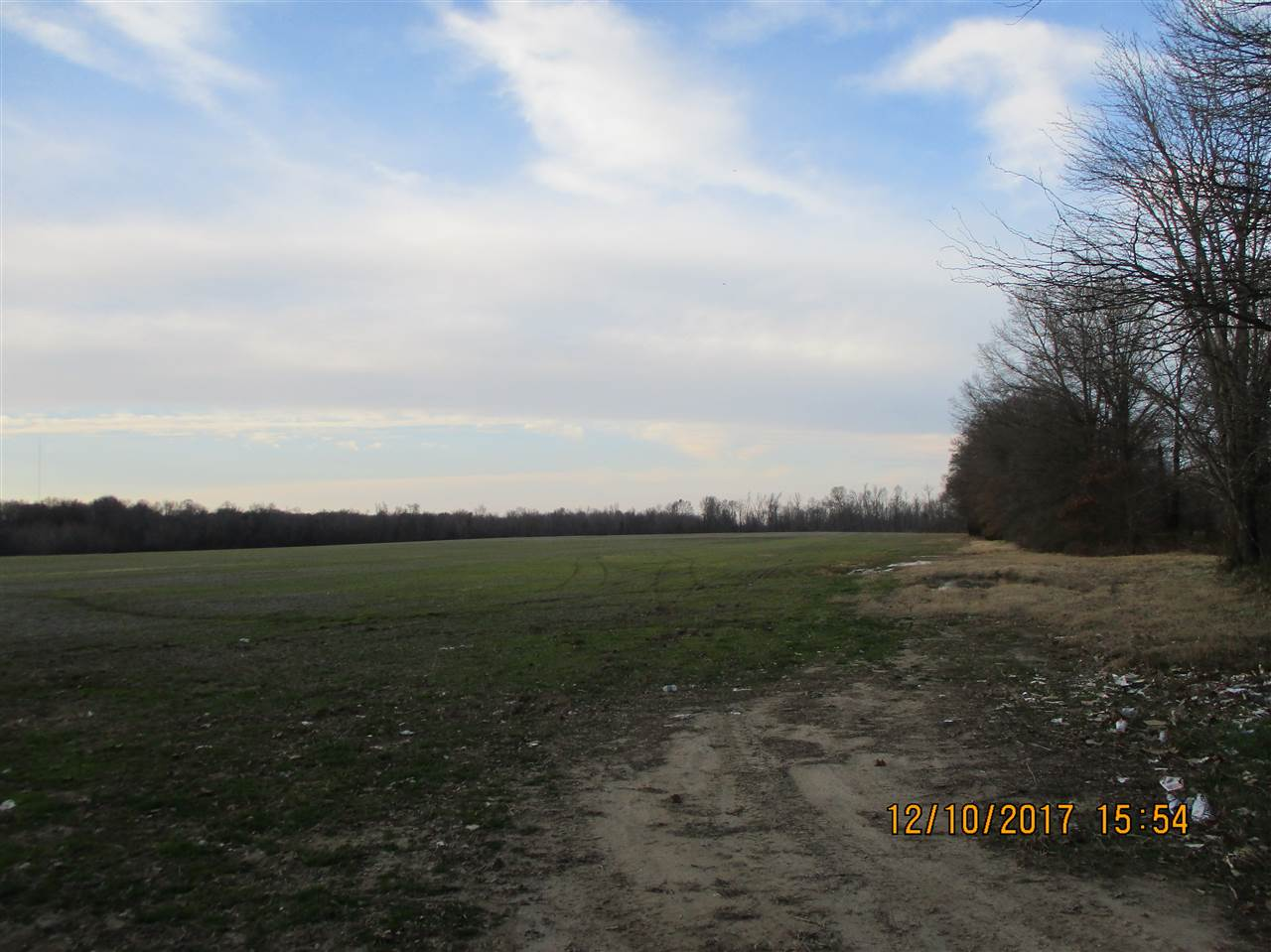 000 Arlan Reason Rd,Alamo,Tennessee 38001,Lots/land,000 Arlan Reason Rd,180799