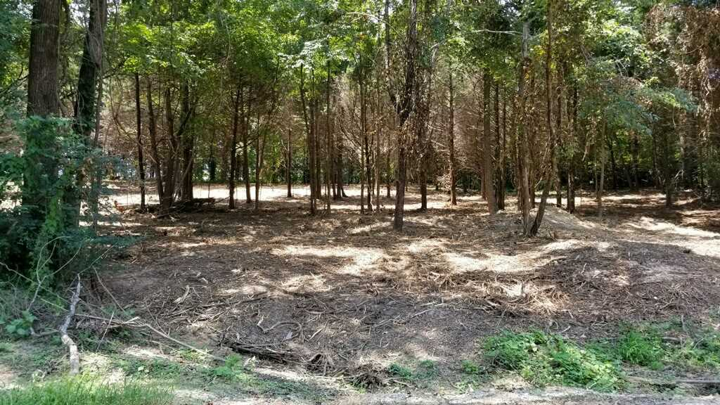 00 Giles Road,McLemoresville,Tennessee 38235,Lots/land,00 Giles Road,181055