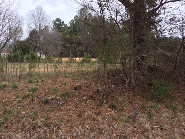 41 Neely Station Road,Denmark,Tennessee 38391,Lots/land,41 Neely Station Road,181804