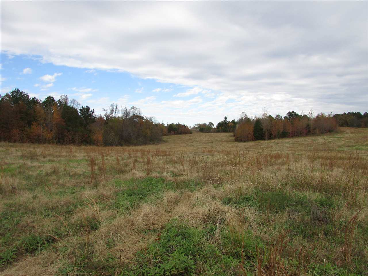 Springhill Church Rd,Huntingdon,Tennessee 38344,Lots/land,Springhill Church Rd,185665