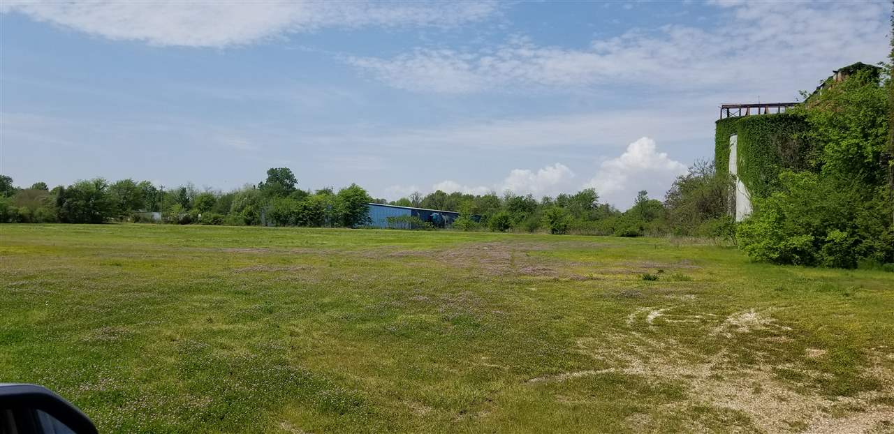 Hwy 78, Tiptonville, Tennessee 38079, ,Lots/land,For Sale,Hwy 78,188625