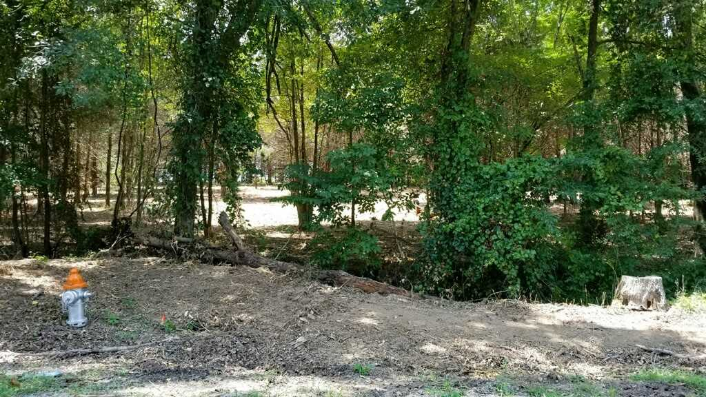 00 Giles Road, McLemoresville, Tennessee 38235, ,Lots/land,For Sale,00 Giles Road,200605