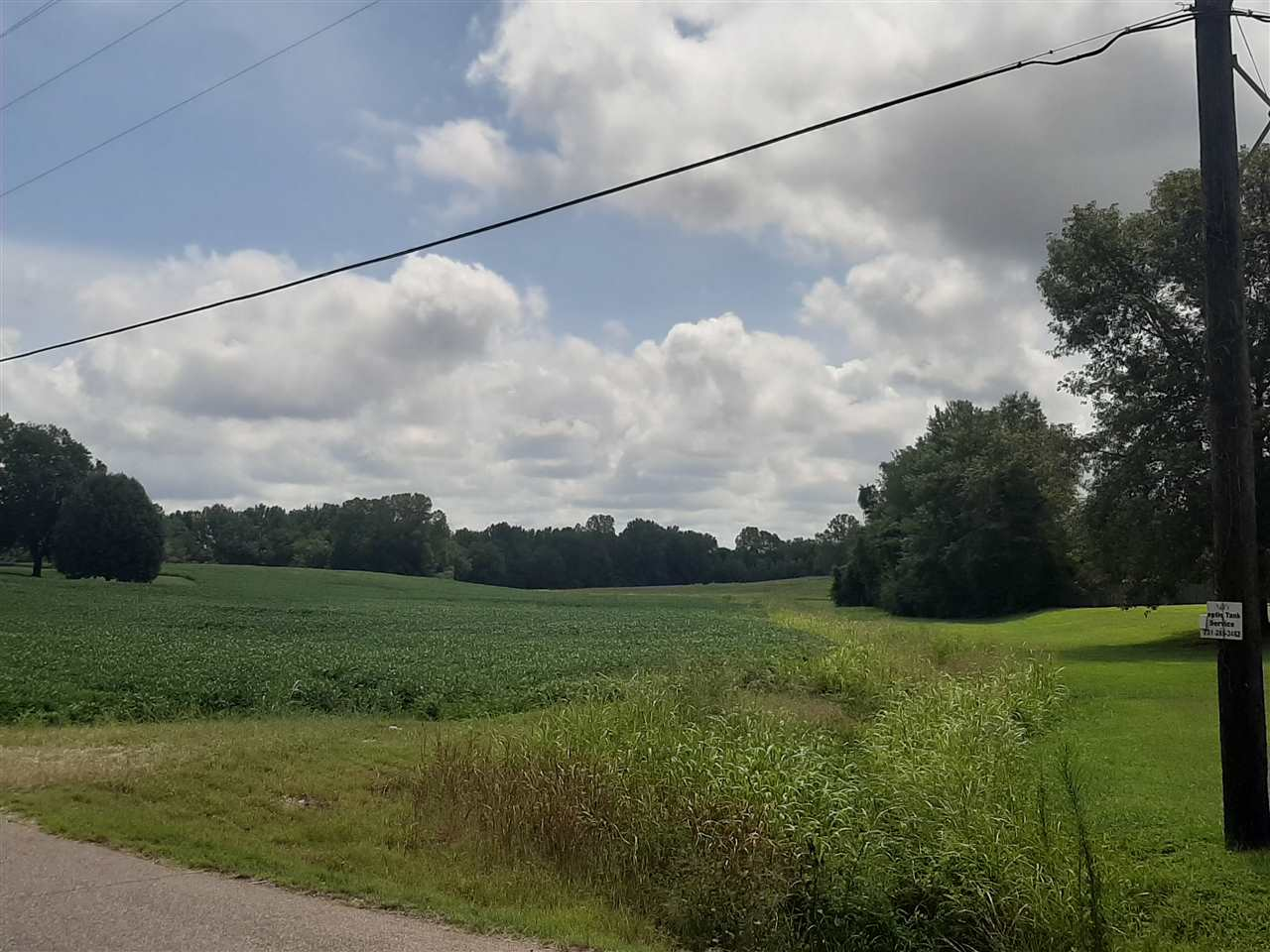 00 Hurricane Hill, Dyersburg, Tennessee 38024-0000, ,Lots/land,For Sale,00 Hurricane Hill,203285