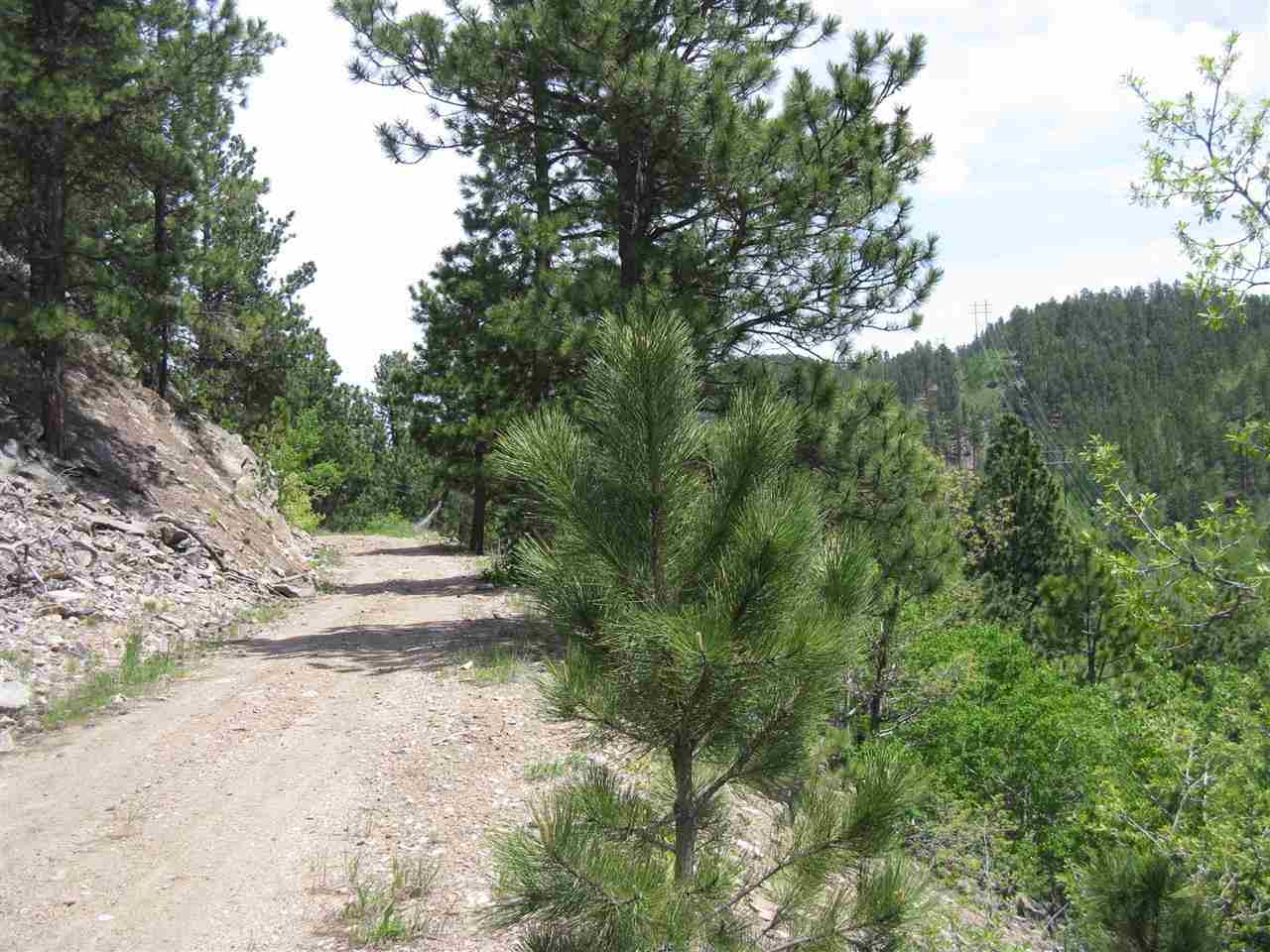 Cutting Mine Road