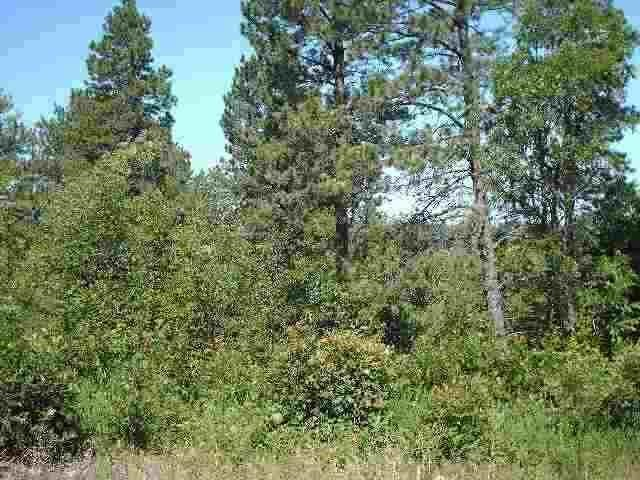 Tract 21 Pasque Loop, Spearfish, SD 57783