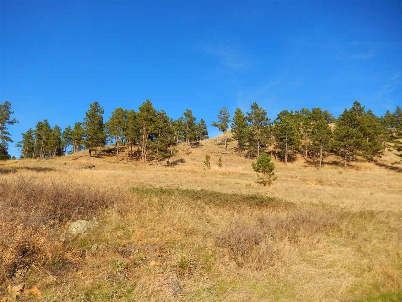 TBD Elk Run Lane