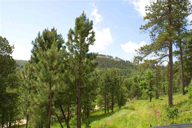 Lot 31 Two Bit Ranch Estates