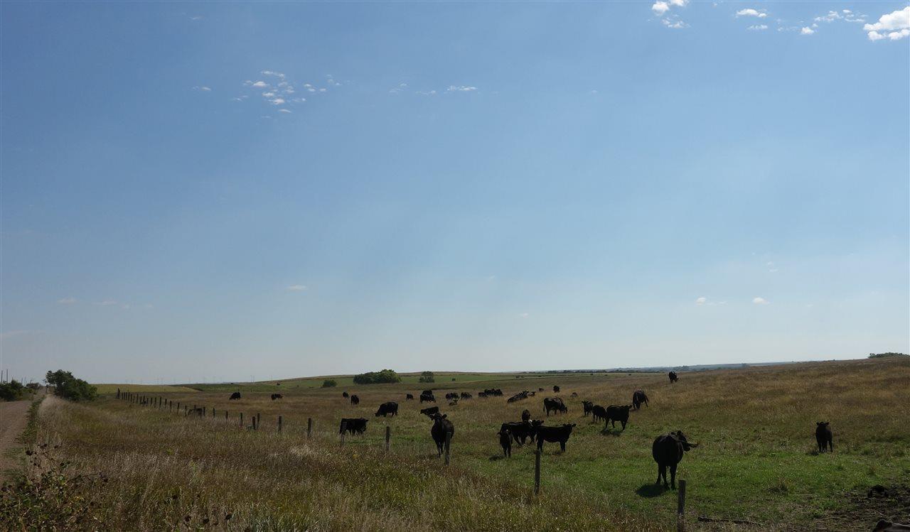 black hills team belle fourche sd farm ranch