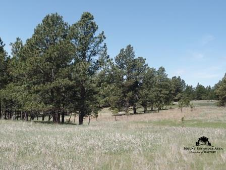 Tract 9 Lone Elk Ranch Sub 1