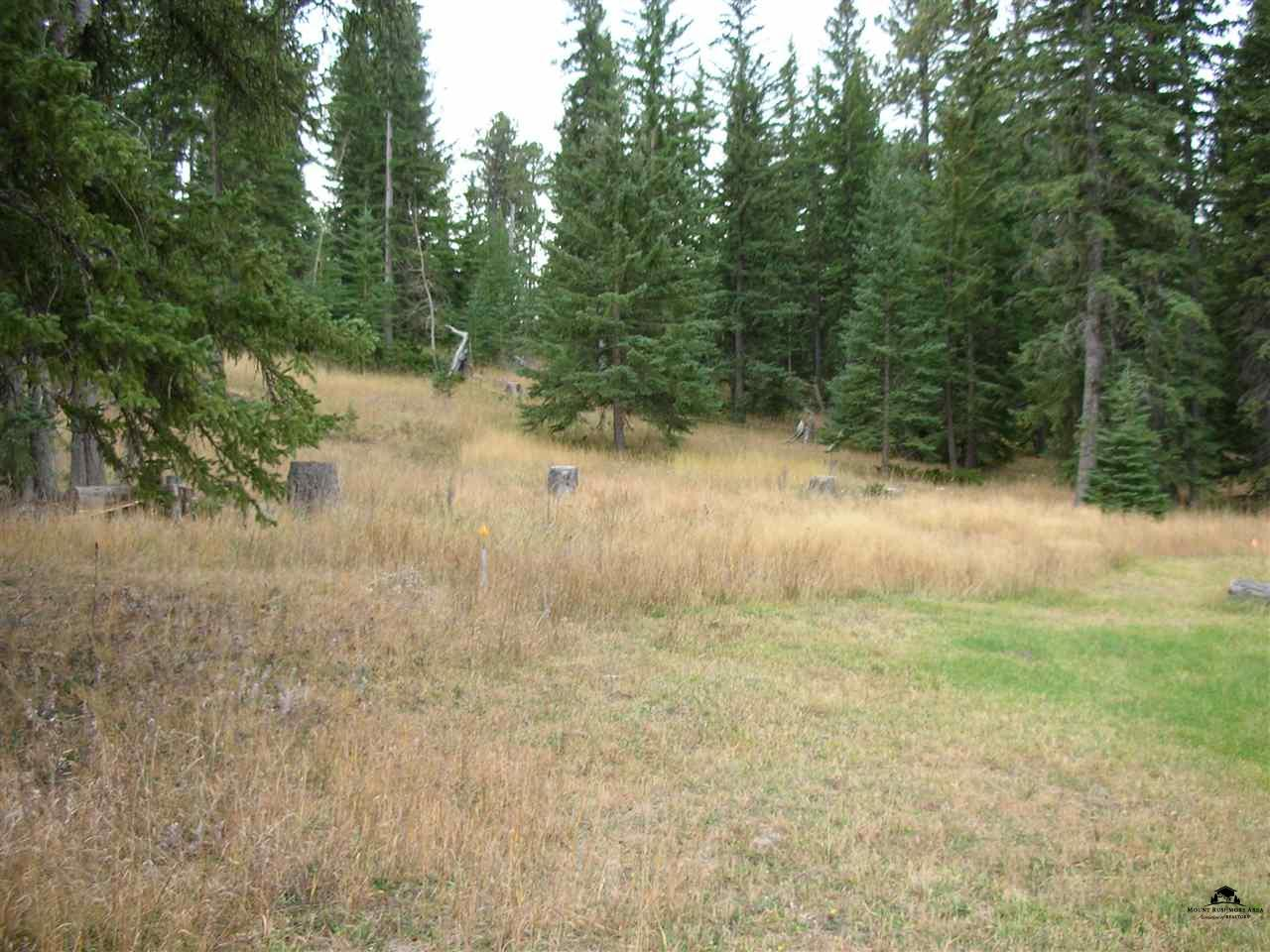LOT 31 E WOODLAND SPRINGS ROAD