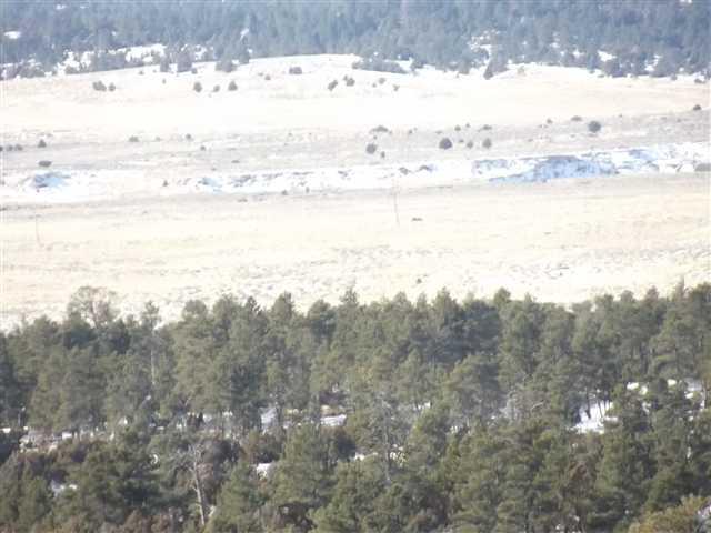 41 Durango Trail