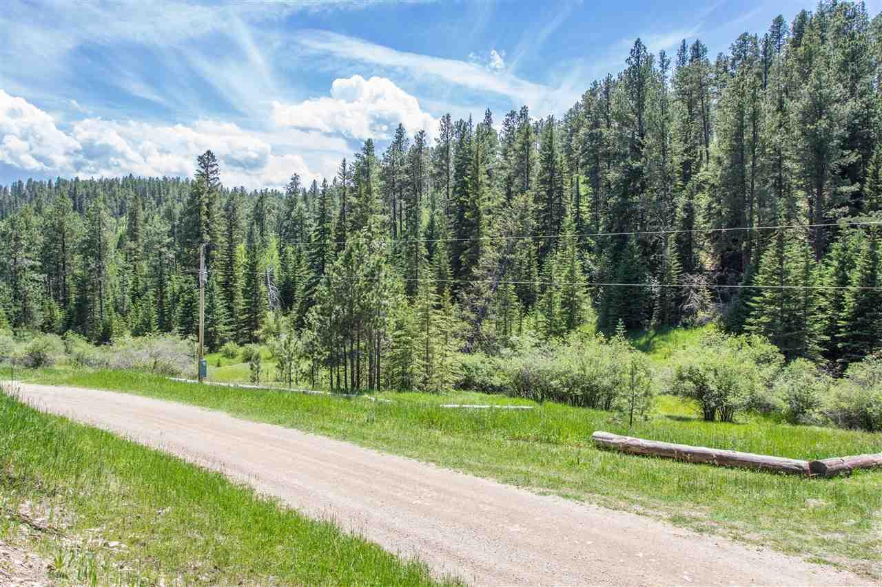 21505 Mountain Stream Road