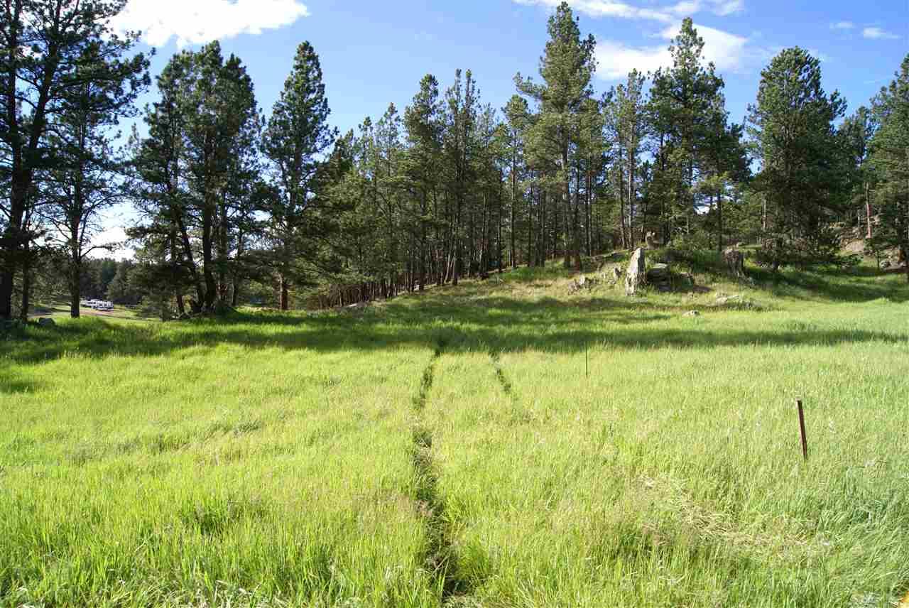 Tract 9B Sidney Trail