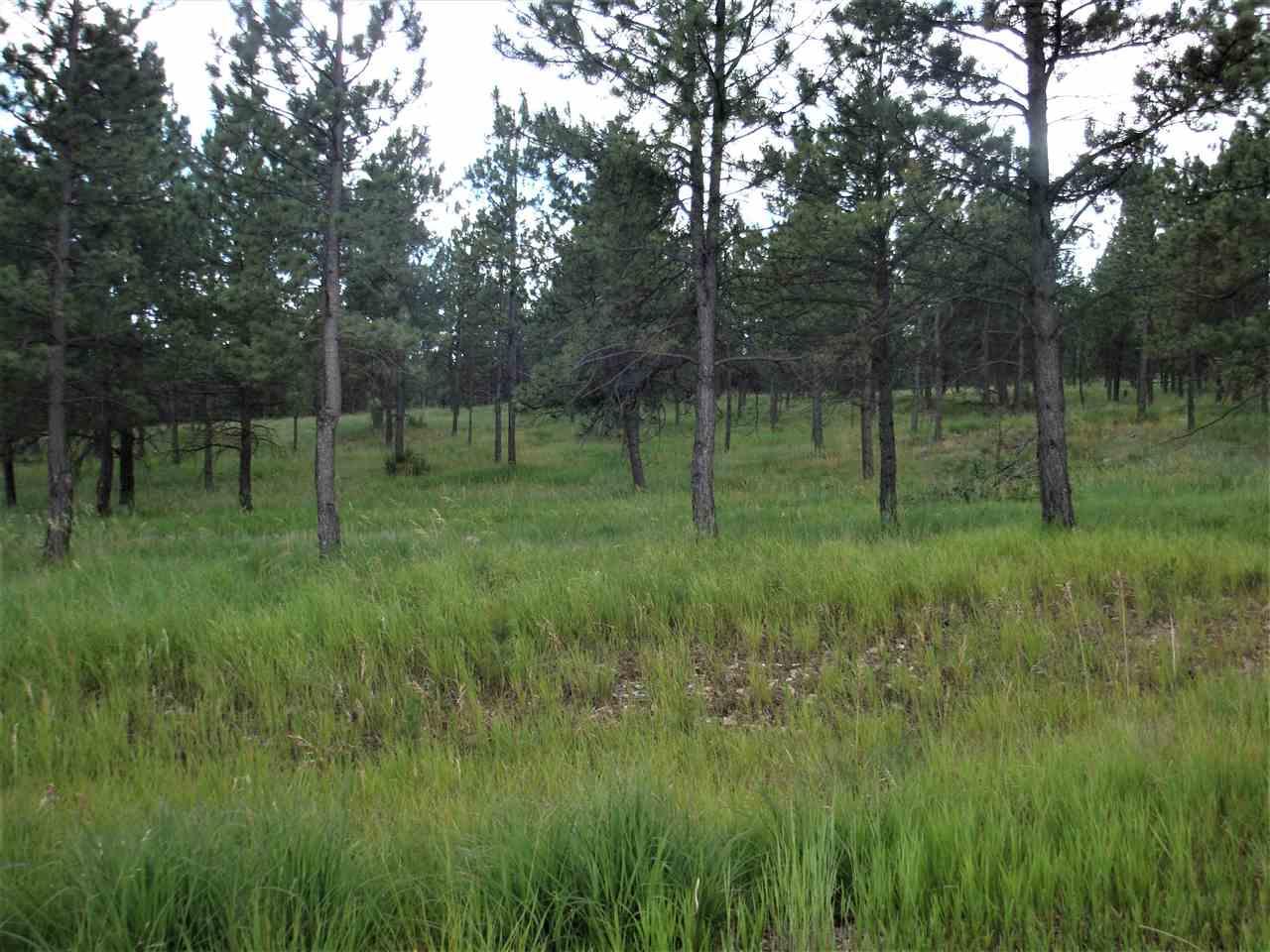 Lot 100 TBD Sage Brush Trail-Hermosa