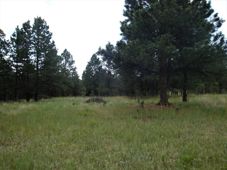 Lot 70 Box Canyon Rd