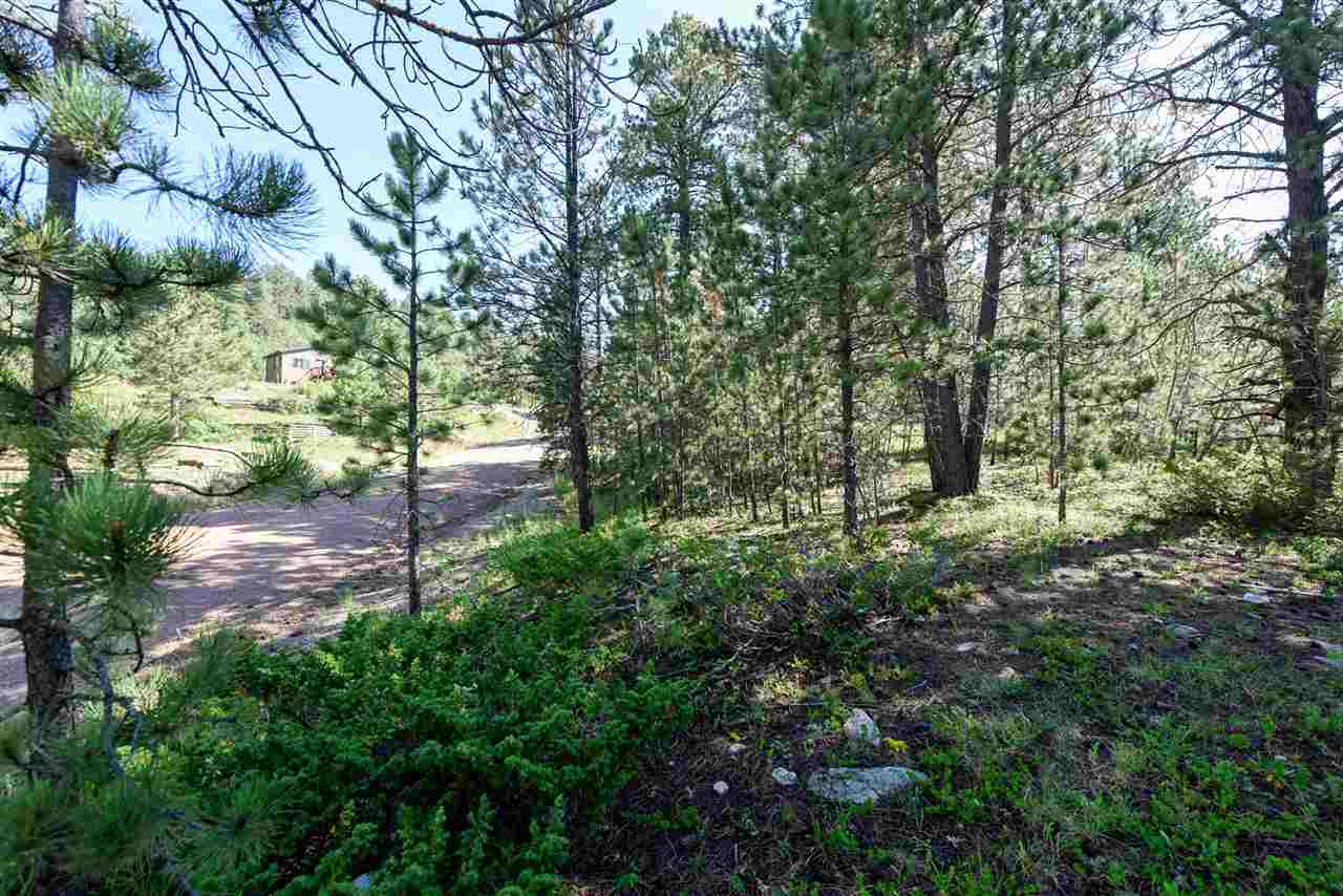 Lot 5 Lost Camp Trail