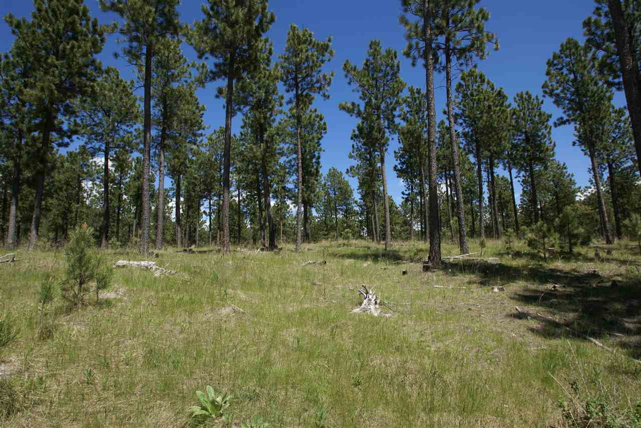 Lot 22 Laramie Trail