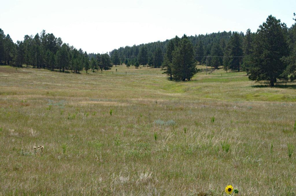 TBD Lone Elk Drive