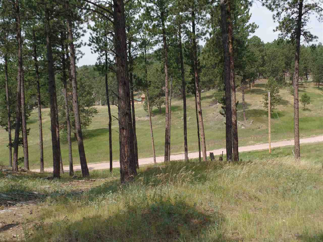 Lot 5 Deadwood Trail