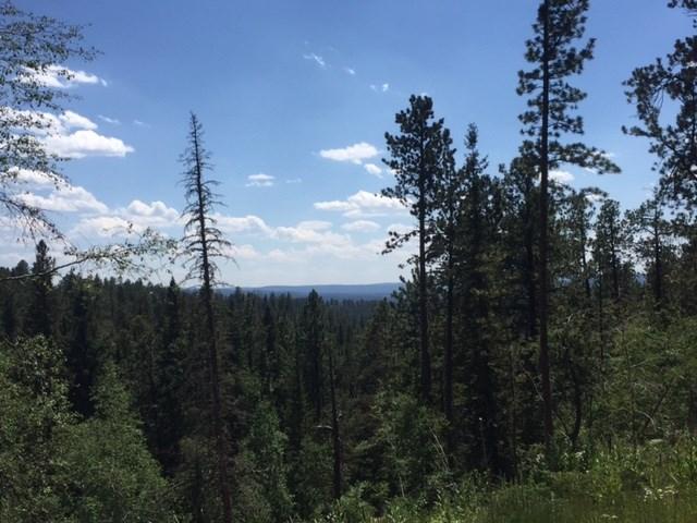 TBD 23 Lost Camp Trail