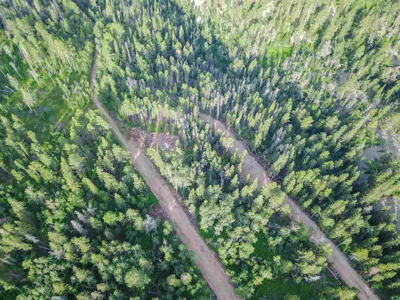 TBD 25 Lost Camp Trail