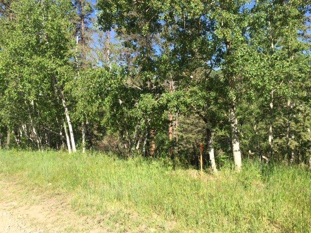 TBD 27 Lost Camp Trail