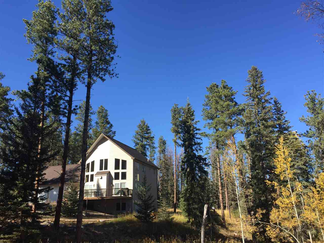 11200 Birch Drive