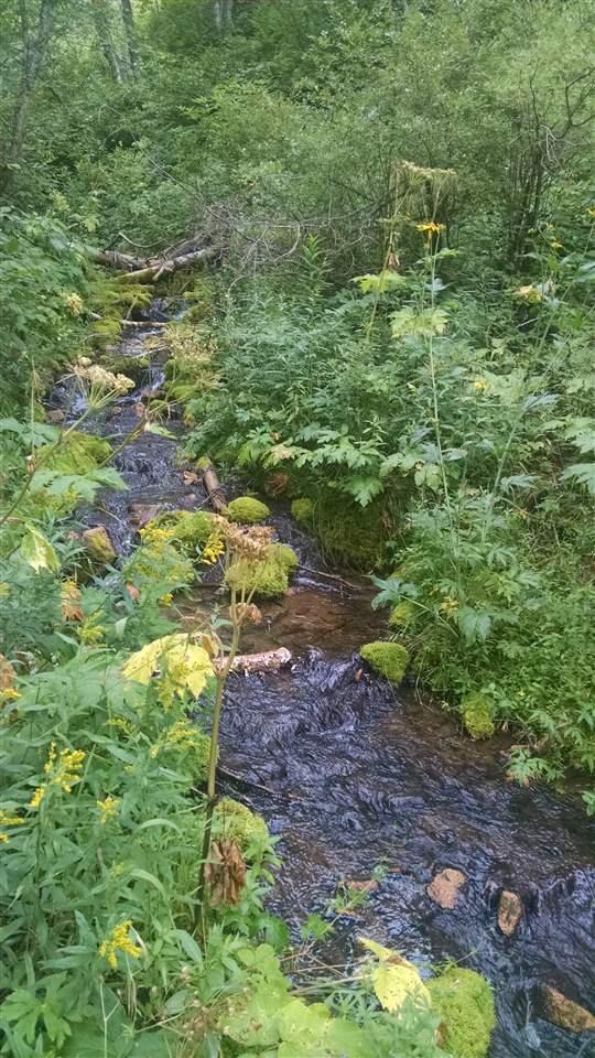 TBD Labrador Creek Place