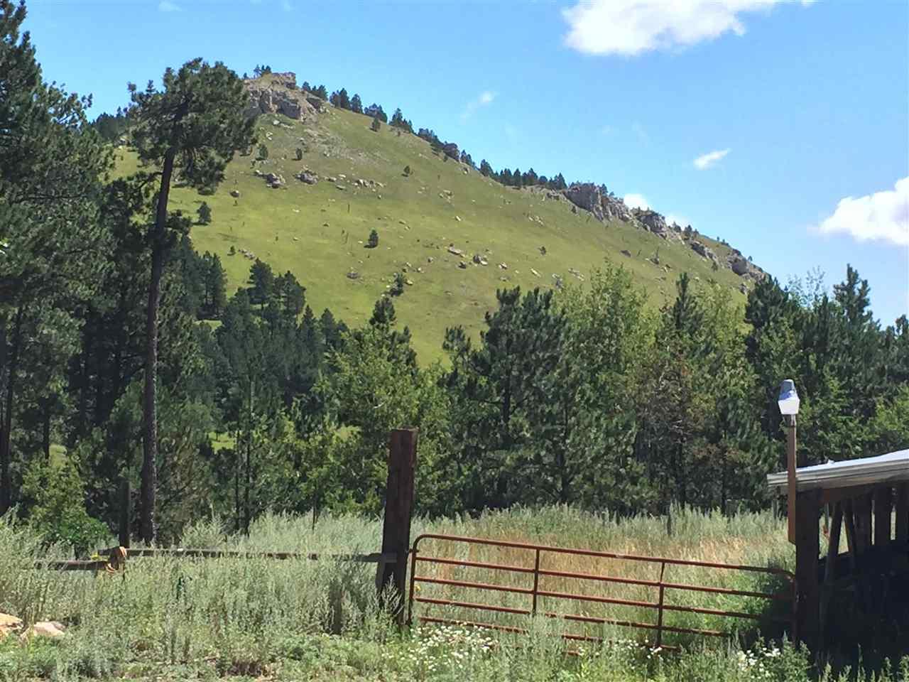 11565 Moon Mountain Lane