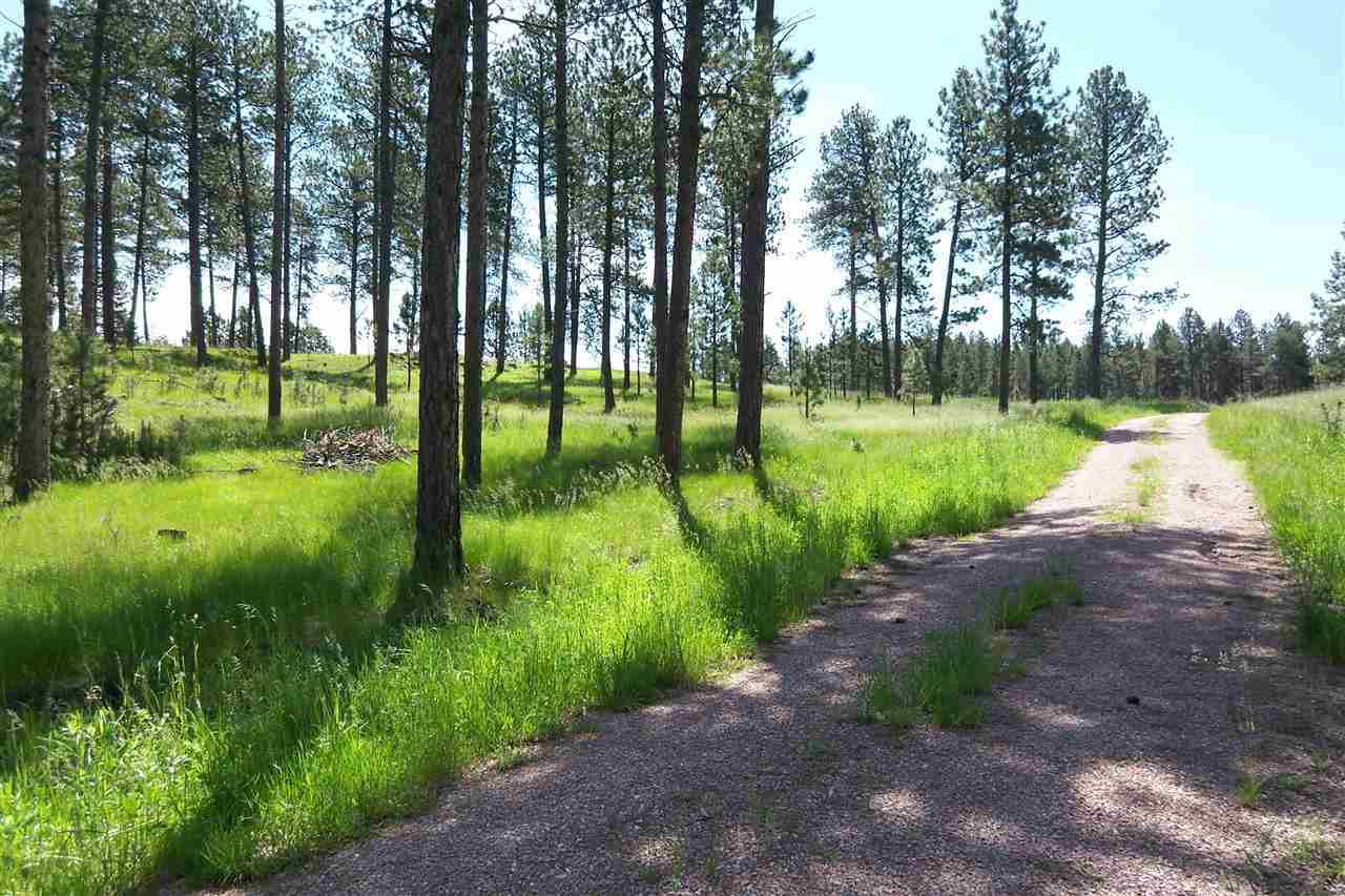 TBD Forest Service Rd #397
