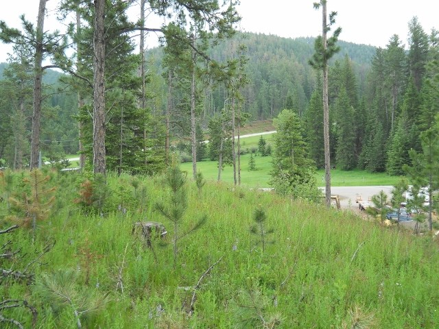 Lot 9 Ironwood Estates
