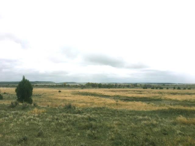 TBD Ridge Road