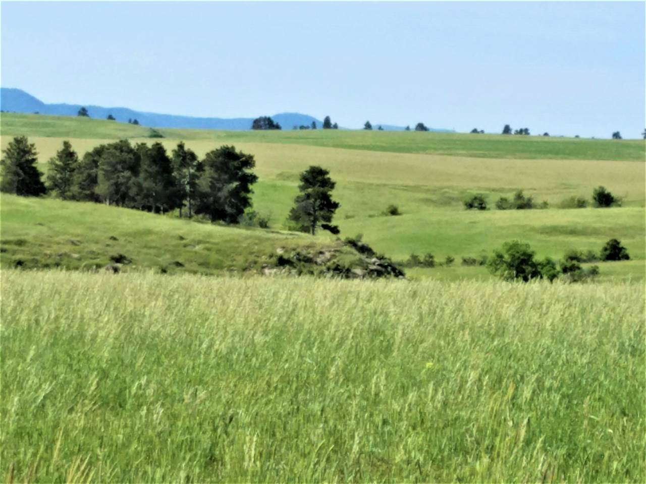 19278 Prairie Hills