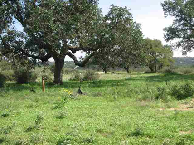 Land for Sale at 28 Nightshade Horseshoe Bay, Texas 78657 United States